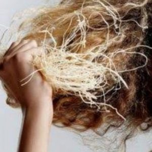 Haircare for dry hair